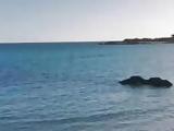SKINNY BLONDE AT BEACH